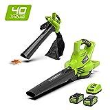 Greenworks Tools 24227UC 40 V Laubgebläse und Sauger inklusive 2 Akkus 2Ah und Ladegerät, grün