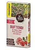 Floragard Bio-Erde Duftend 1x40 Liter - für Rosen, Balkonpflanzen, Kübelpflanzen und Zitruspflanzen - torffrei und bio