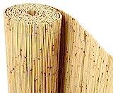 bambus-discount.com Schilfrohrmatten Premium Beach, 200 hoch x 600cm breit, EIN Produkt Sichtschutz Matten Windschutzmatten