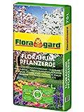 Floragard Florahum Pflanzerde 70 L • Universalerde • für Blumenbeete, Stauden, Sträucher, Gehölze und andere Gartenpflanzen • mit Tongranulat und dem Naturdünger Guano