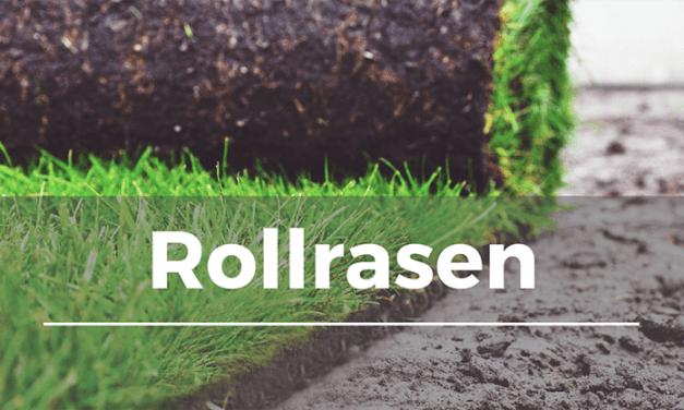 Rollrasen / Fertigrasen verlegen