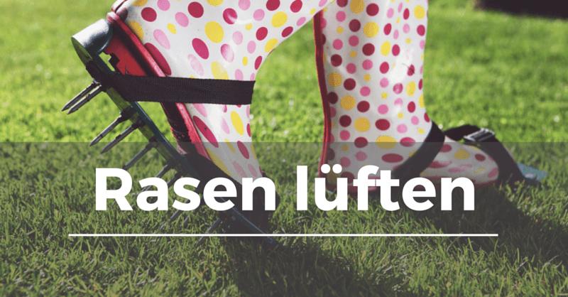 Top Rasen lüften - Garten.Schule &SE_39