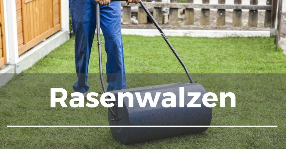 Beliebt Bevorzugt Rasen walzen - Garten.Schule &BF_19